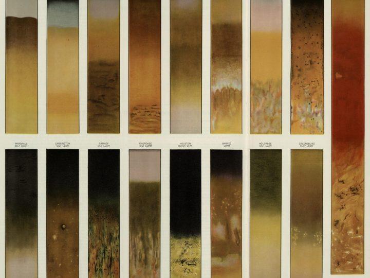 Soil Module